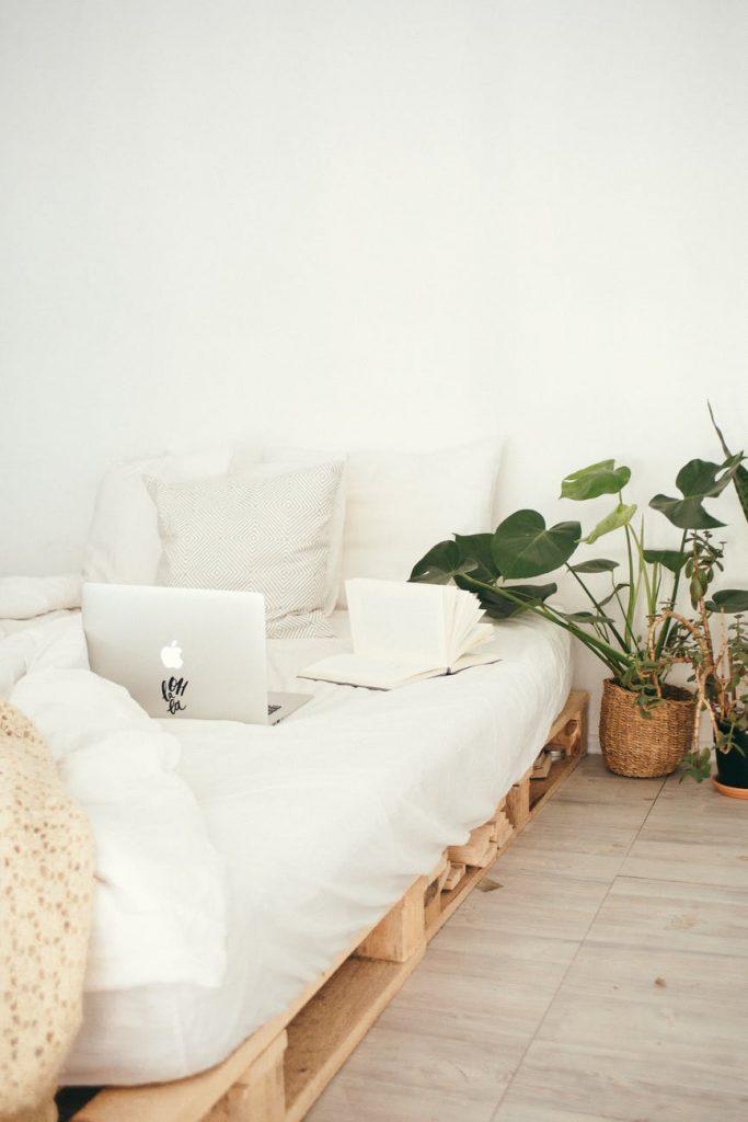 introducir plantas en su espacio